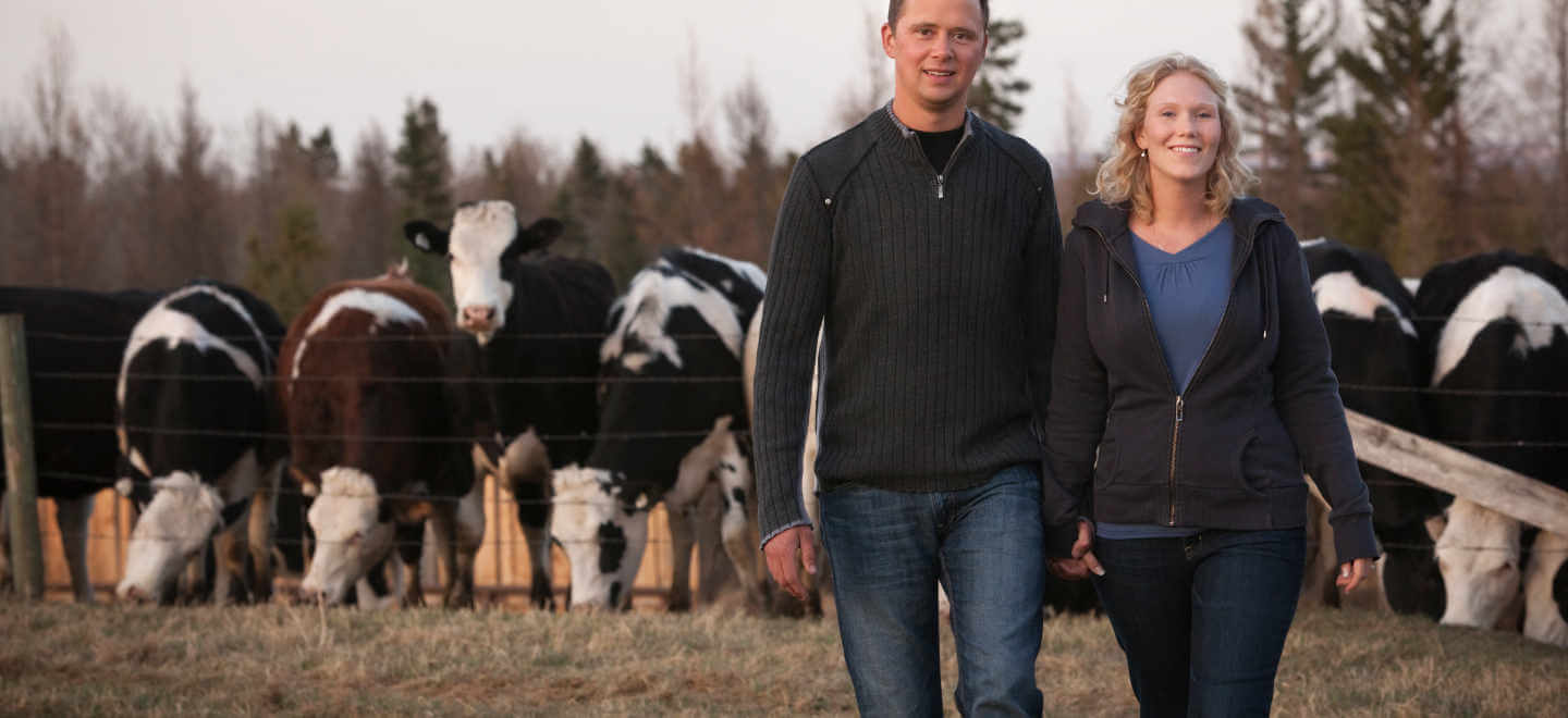 man and woman standing in front of cattle