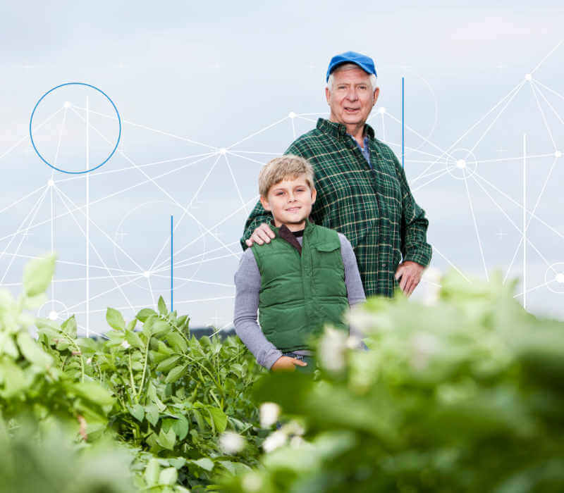 grandfather and grandson standing in crop field