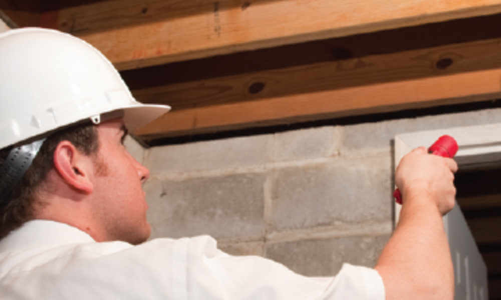 man looking in basement for pests