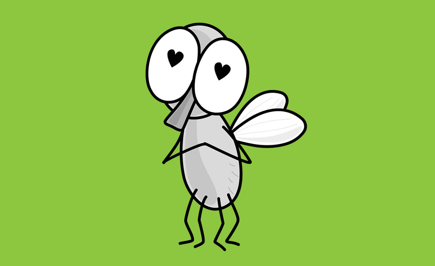 Valentine's Day Blog - insect with hearts in its eyes over a green background