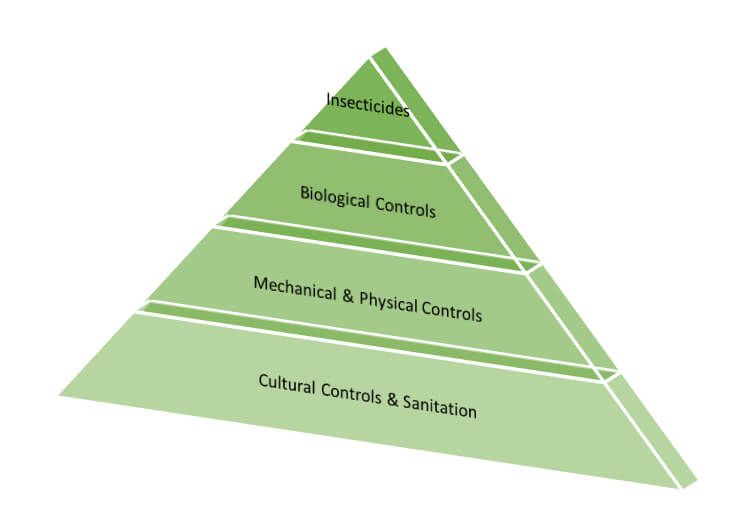 IMP Blog: Tools Pyramid - from top, insecticides, biological controls, mechanical & physical controls, cultural controls and sanitation