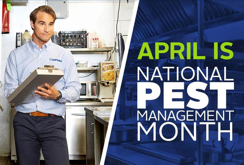 April is National Pest Management Month. image of pest professional holding clipboard in commercial kitchen facility