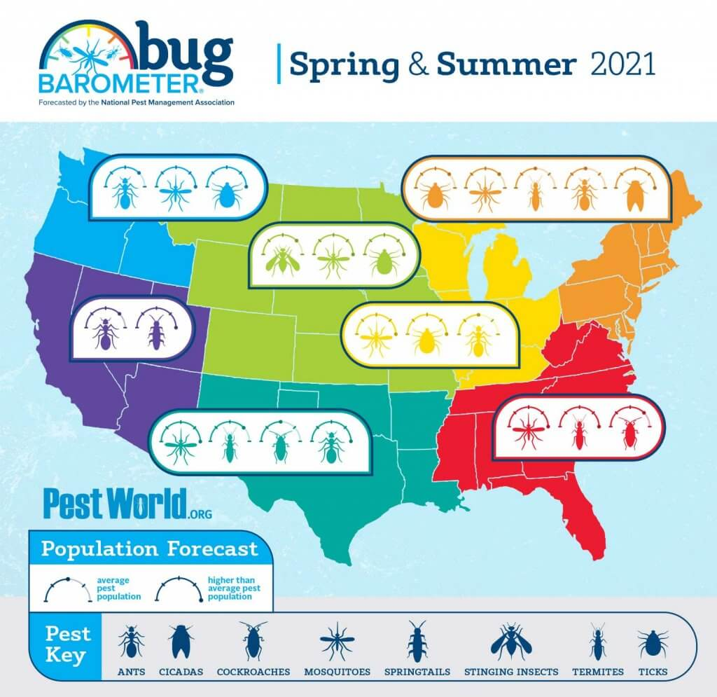 NPMA's Spring/Summer 2021 Bug Barometer - detailing regions in the US and pest icons