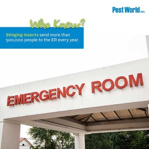 Summer Pests: Who Knew? Stinging insects send more than 500,000 people to the ER every year. Image if Emergency Room.